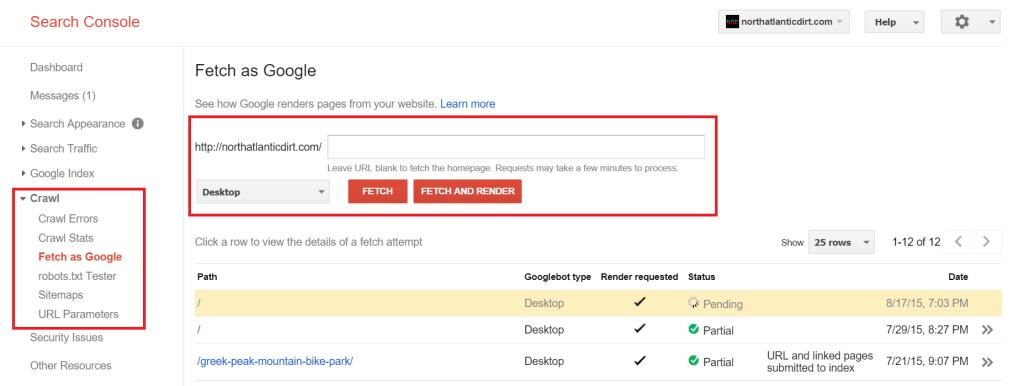 blocking CSS and javascript webmaster tools